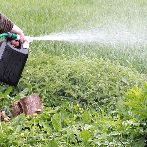 Ejektorspridare 2 5 L-spädning 1:20-för järnsulfat och gödning med vattenslang