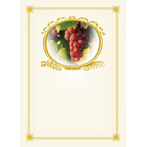 Vinetiketter Vindruvsmotiv in guld ram nr 3 24 st.