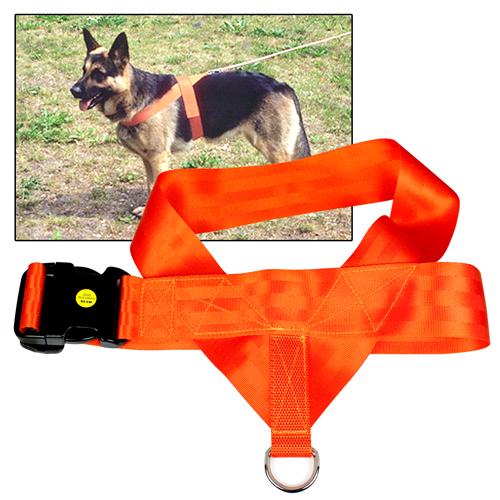 DS Orange Spårsele 70 cm